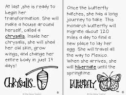 one sassy teacher all about butterflies monarch life cycle close  all about butterflies monarch life cycle close and printables for grades 1 3