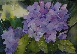 this is the full painting that i featured in my heading hydrangeas grow profusely here on vancouver island and many are this