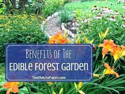 small garden plans for full sun full sun vegetable garden full sun vegetable garden secret landscaping