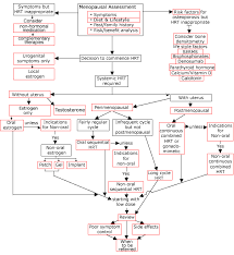 Decision Tree Flow Chart Menopause Matters