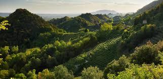 IT) Il Conegliano Valdobbiadene Prosecco Superiore DOCG a Wine Future 2021  - Prosecco.it — Conegliano Valdobbiadene - Just another WordPress site