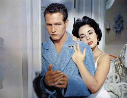 the contradictory power of cat on a hot tin roof village voice the
