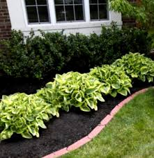 Small Picture Garden Design Garden Design with Inspiration Of Flower Bed Ideas