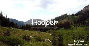Image result for hooper name origin