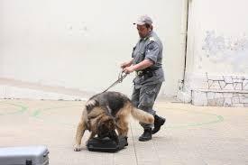 Droga, due arresti a Montescaglioso