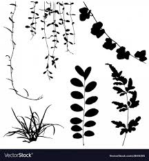 Vectors Silhouettes Silhouettes Of Leaf And Vine Plant Vector Shopatcloth