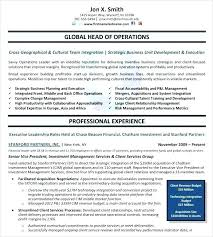 dallas resume service executive resume writing services free templates  samples examples formats executive resume services dallas