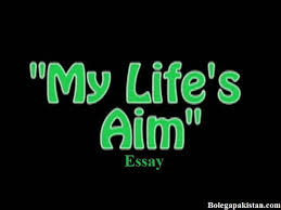 my ambition in life essay or short paragraph my ambition in life essay 100 words