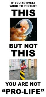 best images about abortion is not murder other pro choice is skyrocketship ldquo i made this today rdquo