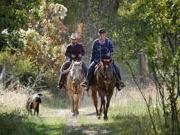 ROCKING Z GUEST RANCH (Wolf Creek, MT) - Avis Ranch - Tripadvisor
