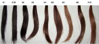 Wig Color Chart Createdhair