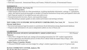 Great Resume Format Awesome Great Resume Format Examples All Resume