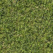 High Resolution Seamless Textures Seamless Grass Texture 2048x2048