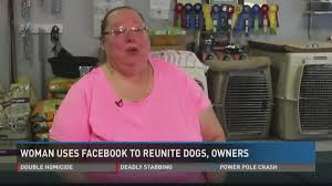 Local woman uses Facebook to reunite lost dogs, owners | ksdk.com