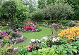 Small Picture Want Fresh Vegetables Build Your Own Vegetable Garden Nourish