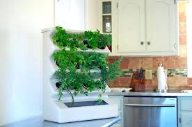 indoor herb garden kit. Indoor Herb Garden Kit Use Of For Your G