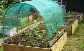 garden shade cloth. Garden Shade Cloth Nice Vegetable I