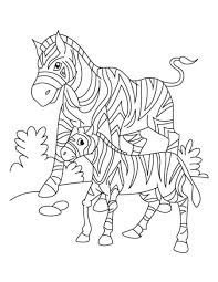 Small Picture Cute Zebra Coloring Pages Coloring Page