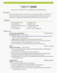 Unique Resume Templates Beginner