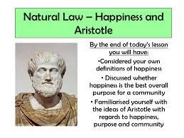 aristotle happiness and virtue essay introduction dissertation  aristotle happiness and virtue essay