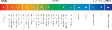 A Comprehensive Guide To Testing Ph Of Food And Drink