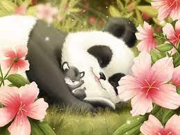 niedlichen Panda und Junges HD Desktop ...