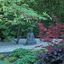 Small Picture 104 best Oriental Gardens images on Pinterest Japanese gardens
