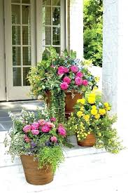best flowers for pots flowers for patio pots patio planters ideas best container gardens images on best flowers for pots