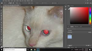 How To Remove Flash Light In Eyes Remove Red Eye Manually In Photoshop