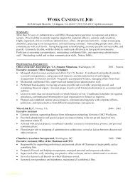 Best Resume Format Beauteous Best Resumes Examples Best Resume Format For Executives With Grocery