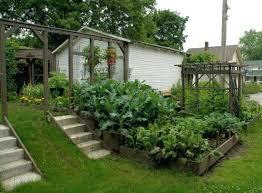 terraced vegetable garden terraced garden vegetable terrace vegetable garden kerala