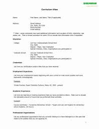 Cissp Resume Format New Resume Format For It Resume Formats