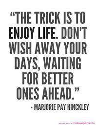 Enjoying Life Quotes Awesome Download Enjoying Life Quotes Ryancowan Quotes
