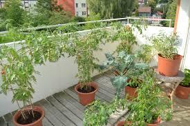 apartment patio garden. Apartment Gardening Awesome Patio Garden