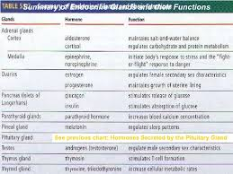 Hormones And Their Functions Chart Biology 2 Topic 7 Chemical Coordination Endocrine System