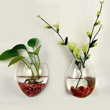 plants hanging wall vase