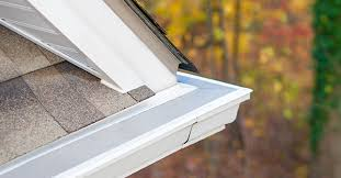 Take Advantage of Gutter Cleaning Tools How to Make Easier   LeafFilter