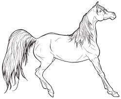 Wild Mustang Horses Coloring Pages Coloring 22503 Bestofcoloringcom