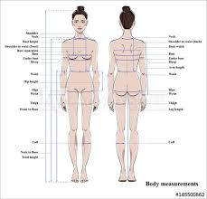 Woman Body Measurement Chart Scheme For Measurement Human Body For