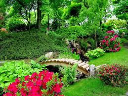 1024x768 flower flower garden an flowers nature trees wallpaper themes