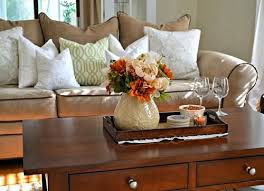 beautiful tray for coffee table in living room