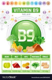 Folic Acid Vitamin B9 Rich Food Icons Healthy