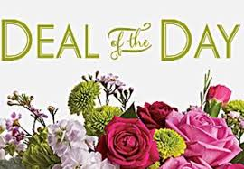 deal of the day by teleflora
