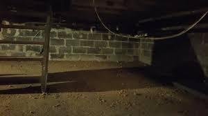basement i wish i could stay here.  Basement Basement I Wish Could Stay Here Here In Basement I Wish Could Stay Here A