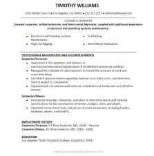 Carpenter Resume Objective 19 Job Description For Writing