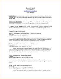 Private jet flight attendant resume