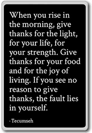 Tecumseh Quotes Awesome Amazon When You Rise In The Morning Give Thanks For The