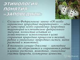Презентация на тему Реферат на тему Заповедники России  5 1