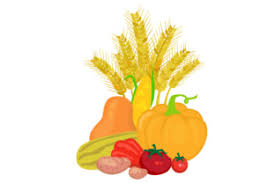 Food plants vegetable illustrations pumpkin free supply vegetables healthy november halloween power agriculture nature fruits. Fall Vegetable Collection Svg Cut Files Free Funny Svg Quotes