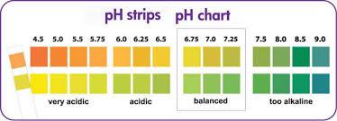 Ph Dip Sticks Dry Chemical Tester Buy Ph Test Sticks Ph Stick Medical Ph Stick Product On Alibaba Com